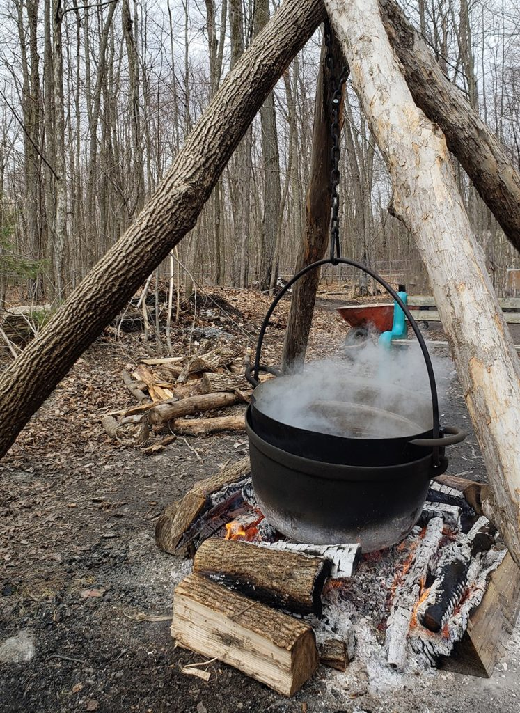 24 Hours in Ottawa - Maple and Berry Farm Sugar Bush